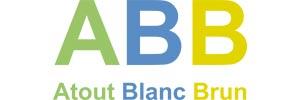 serious-team-logo-ABB