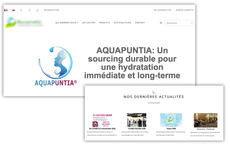 refonte-graphique-site-web-communication-360-serious-team-360-agence-communication-yvelines-78-4
